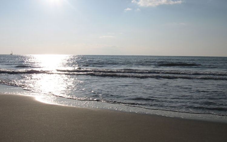 Long, wide and sandy beaches at Versilia