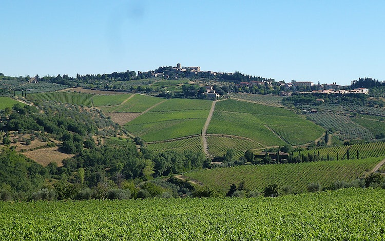Day trip from San Gimignano to Chianti, an easy day trip