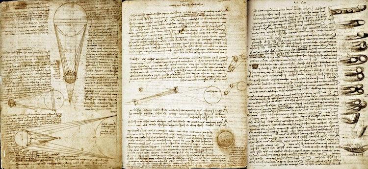 Leonardo da Vinci Codex :: VisitFlorence.com