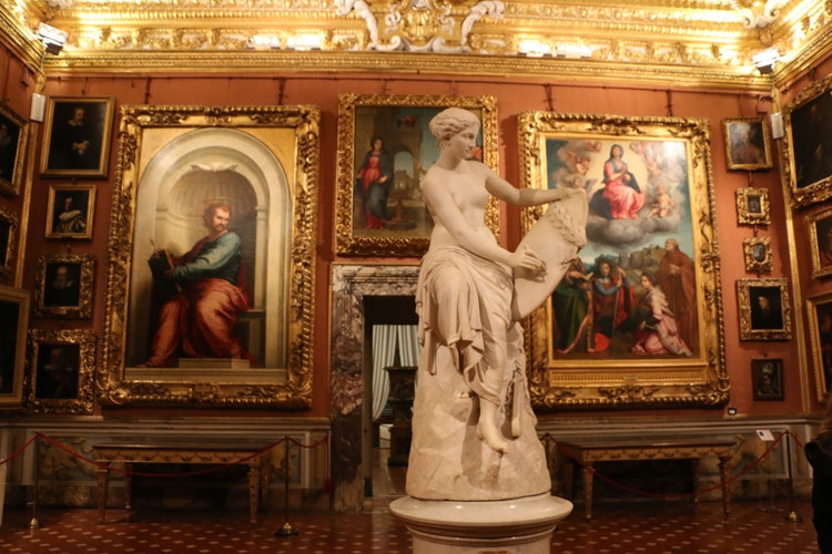 Palazzo Pitti and the Palatina Gallery