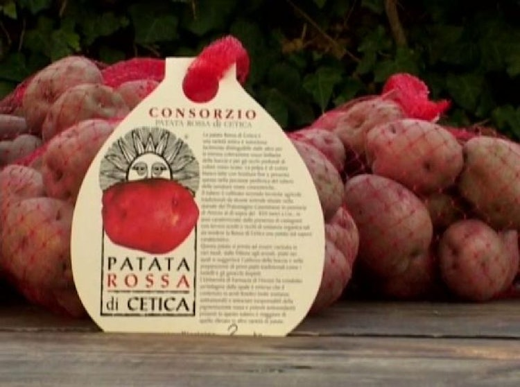 Potatoes in Tuscany: Patata di Cetica, history and recipes