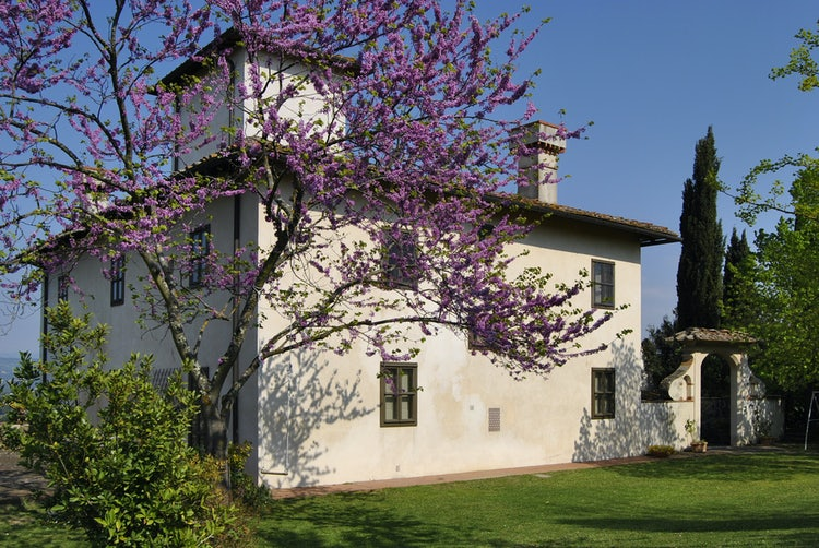 Tuscan vacation villa rental