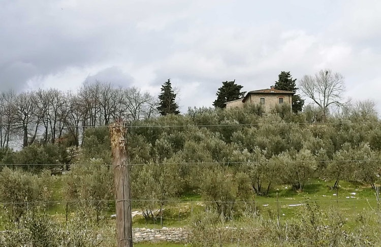 April afternoon, as the clouds roll in at Agriturismo Vicolabate