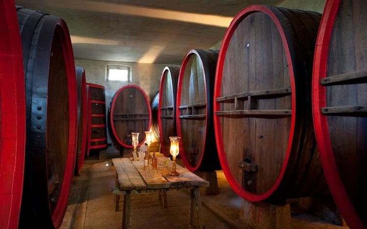 Wine Cellar at Villa Dianella