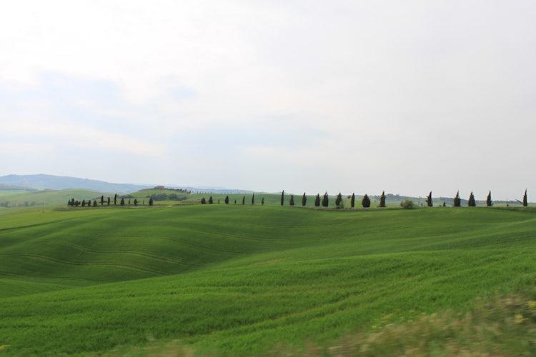 I paesaggi della Valdorcia