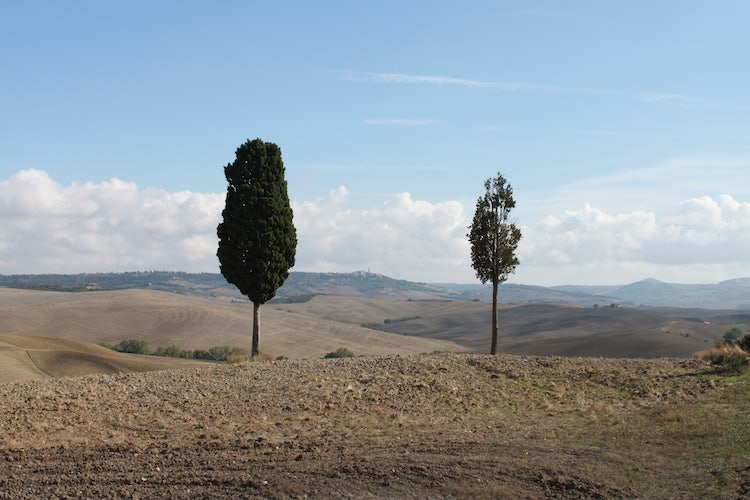 UNESCO Sites: Val d'Orcia